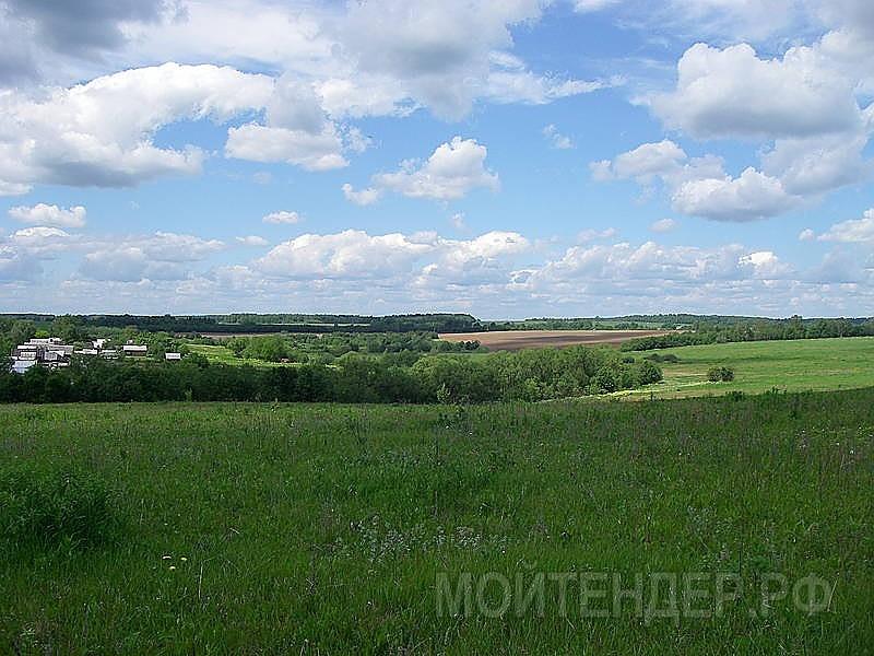 Мойтендер.рф-1575-33-136863: Фото 3