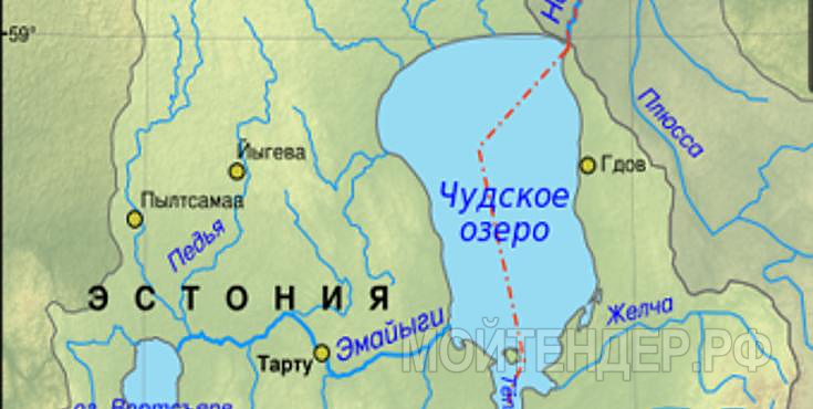 Мойтендер.рф-1648-77-11513: Фото 1