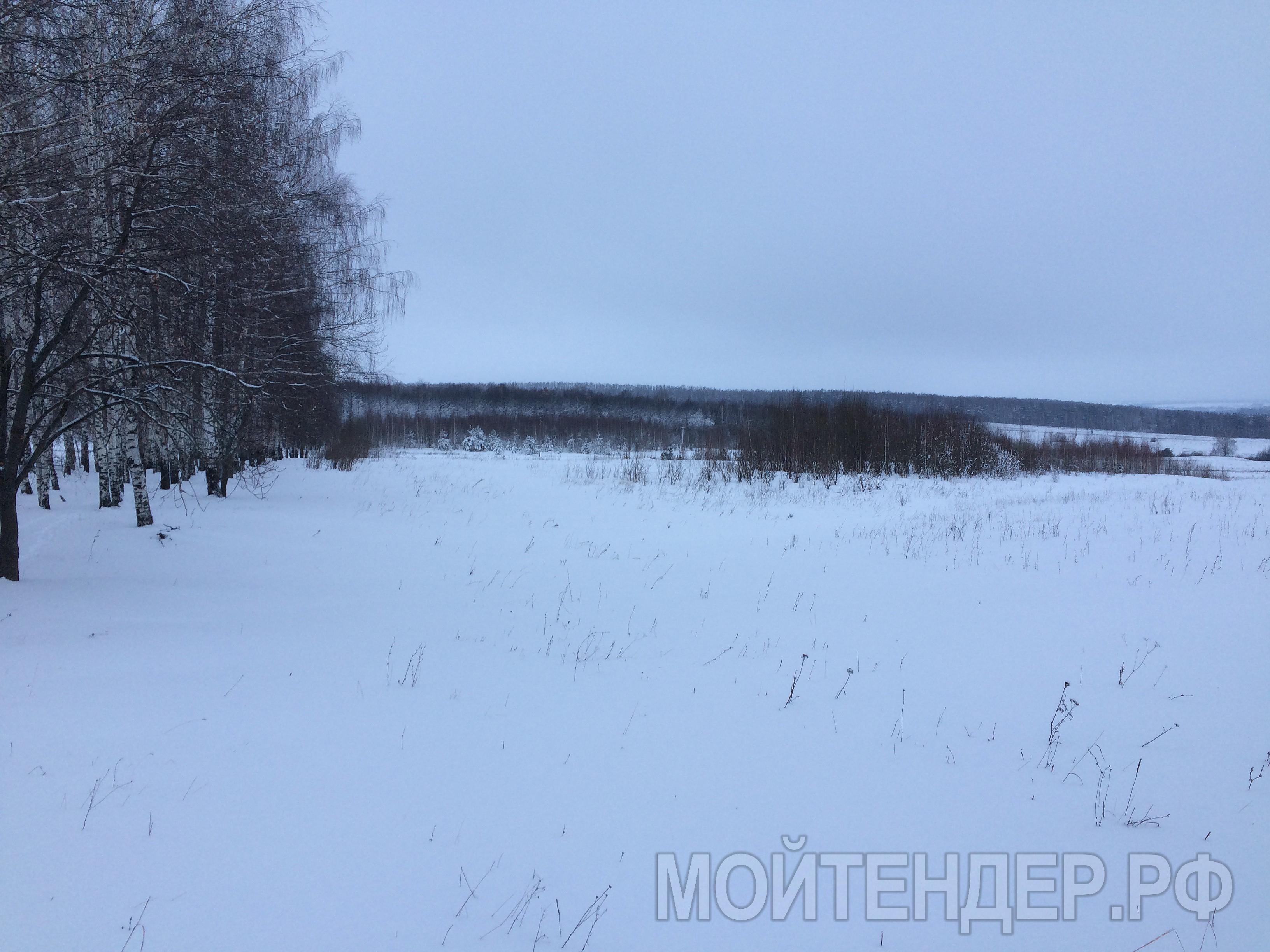Мойтендер.рф-576-16-11267: Фото 1