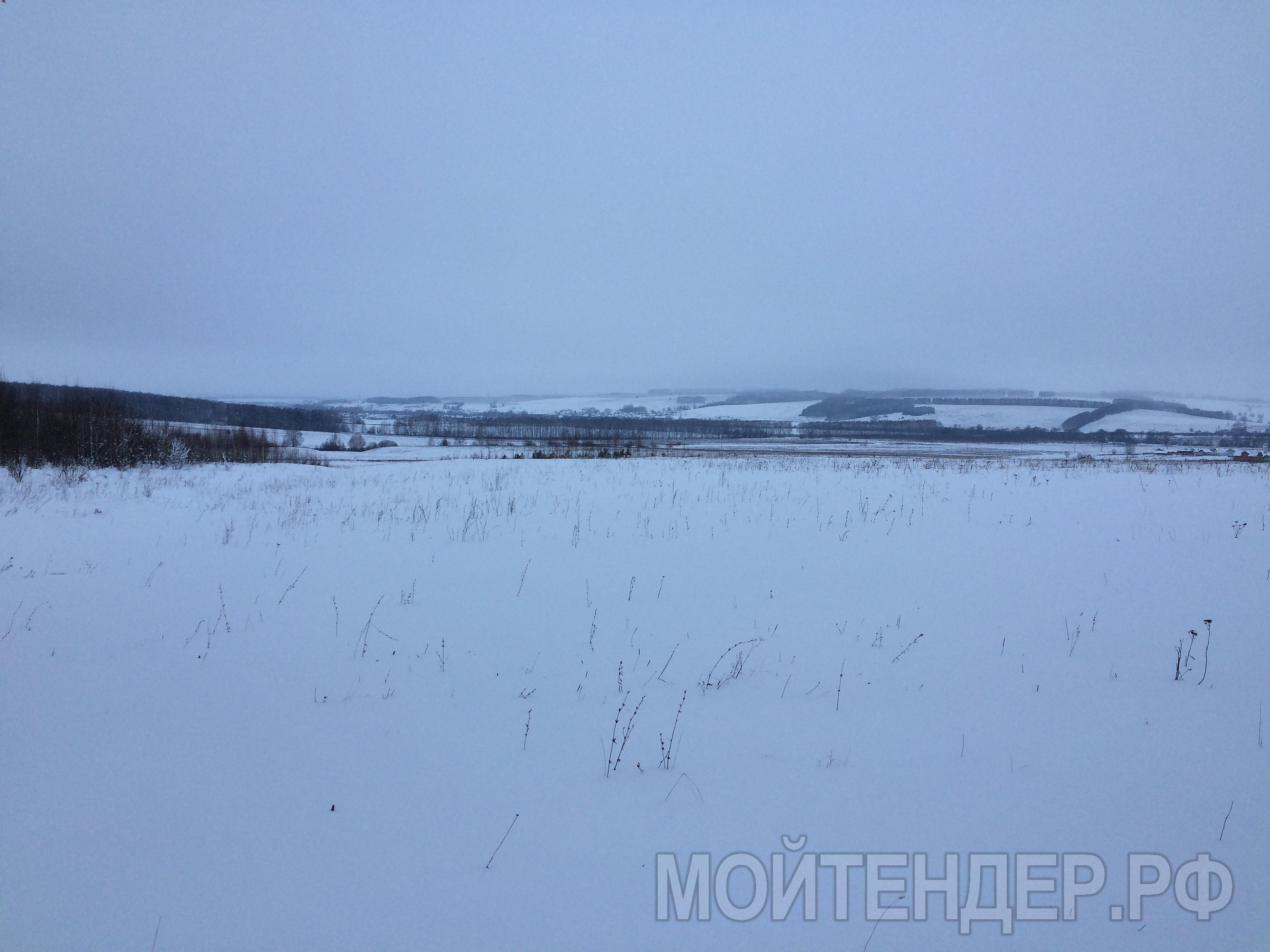 Мойтендер.рф-576-16-11267: Фото 2