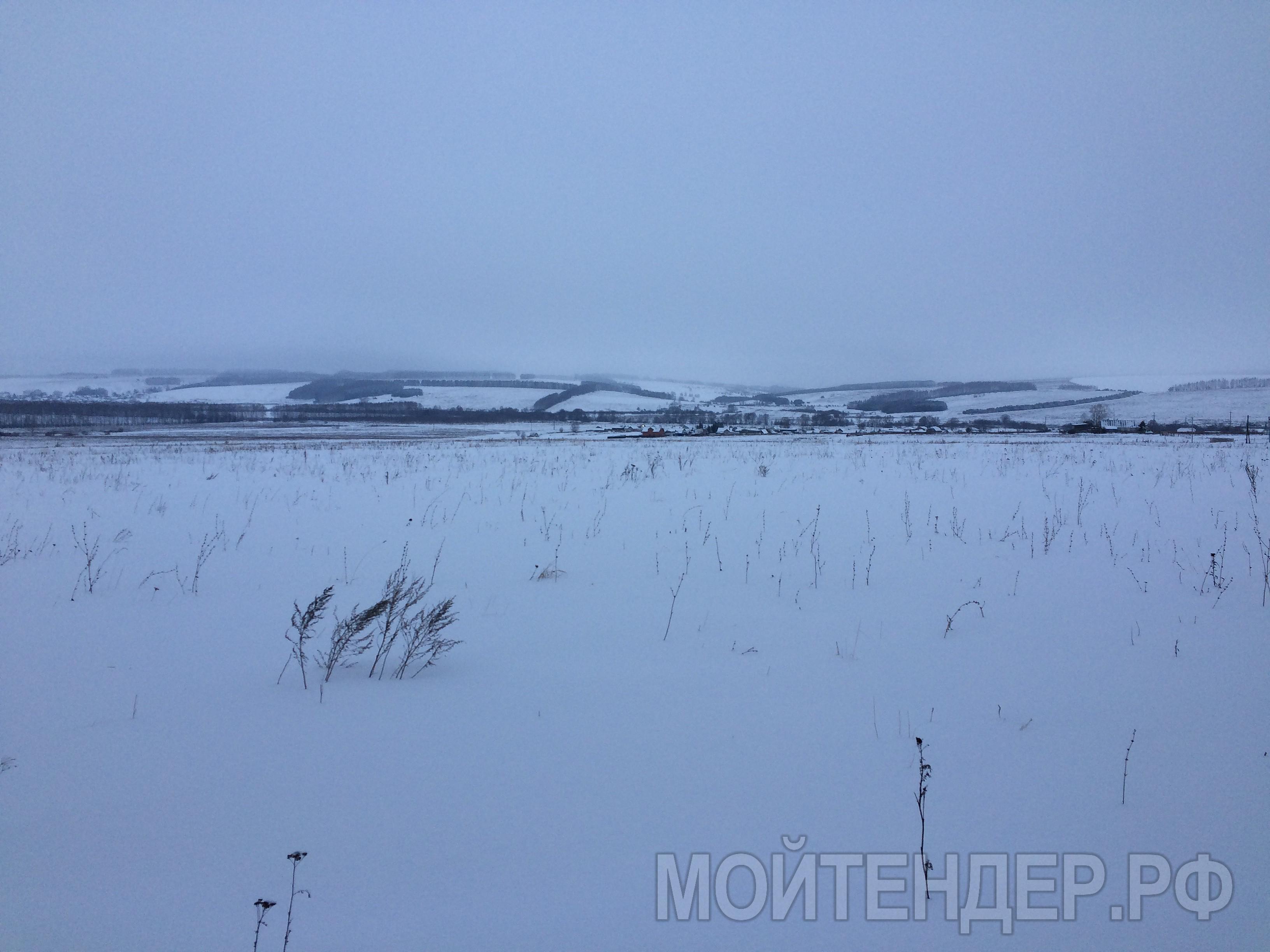 Мойтендер.рф-576-16-11267: Фото 3