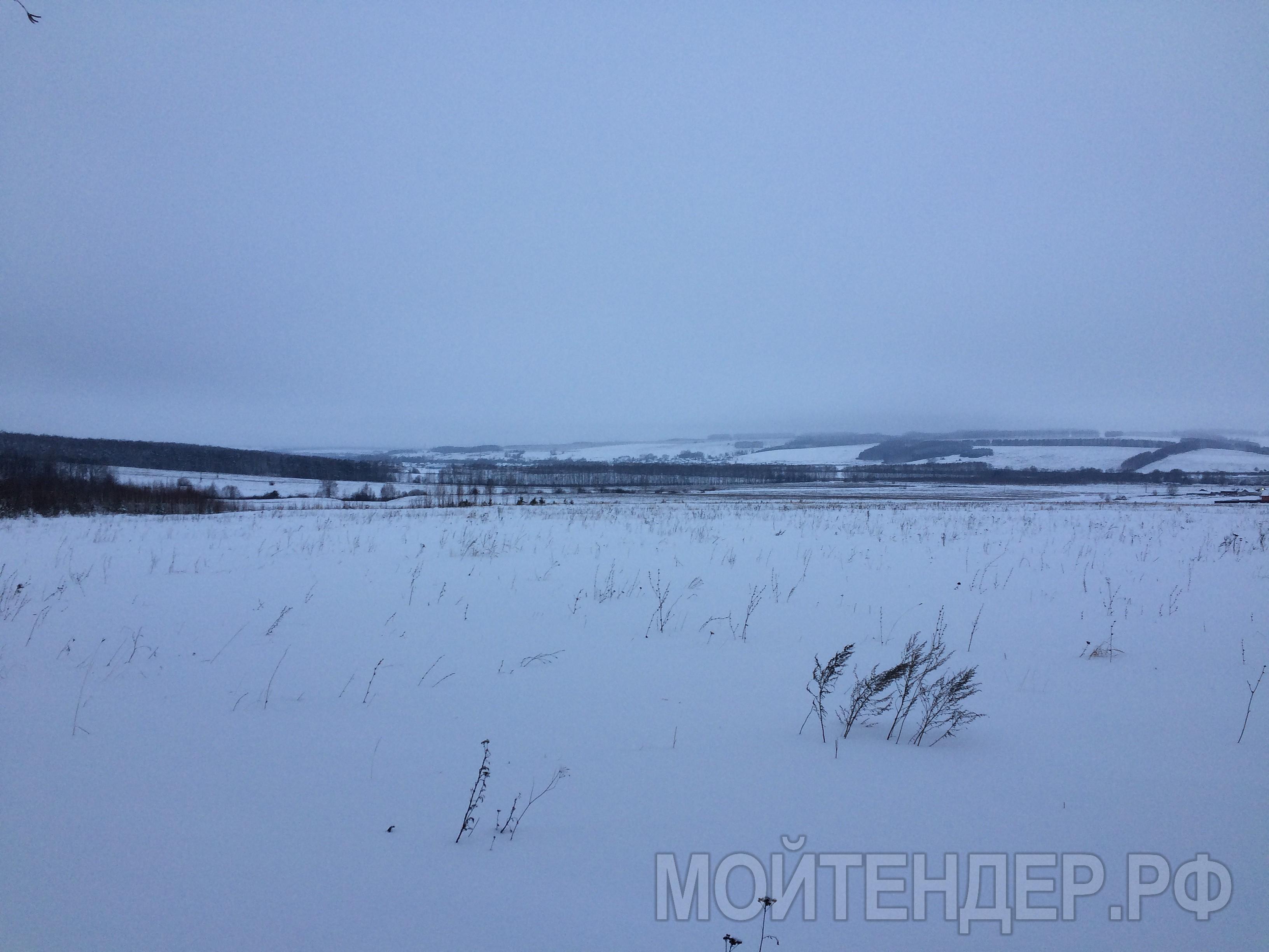 Мойтендер.рф-576-16-11267: Фото 4